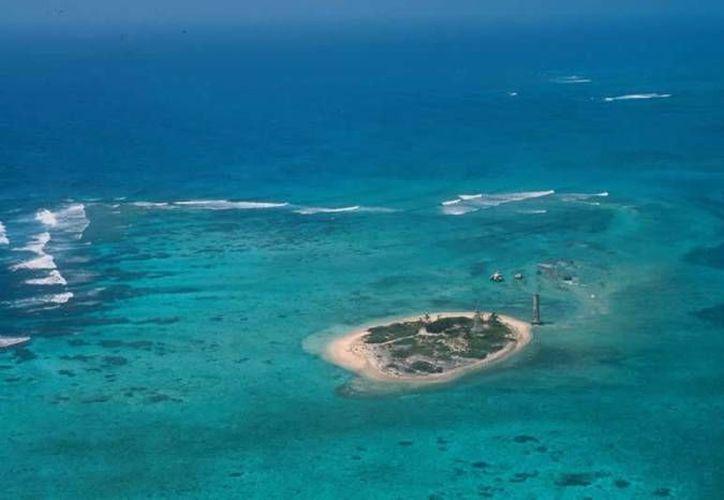 La conservación de los arrecifes coralinos del área natural protegida conocida como Banco Chinchorro, es del 27%. (Archivo/SIPSE)