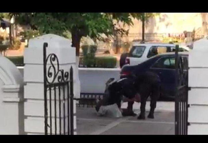 Un ciudadano captó en video el momento en que los agentes cometían abusos contra un indigente, en el Paseo de Montejo. (SIPSE)