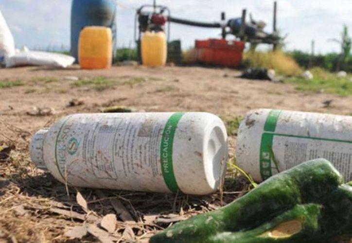 Representan un 'foco rojo' en contaminación para la zona. (Carlos Castillo/SIPSE)