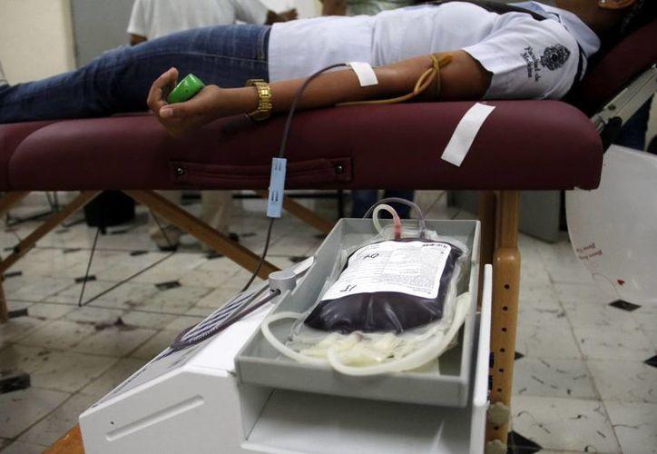 Antes de aceptar la donación, a los voluntarios se les efectúa una encuesta sobre su salud y sus hábitos. (Milenio Novedades)