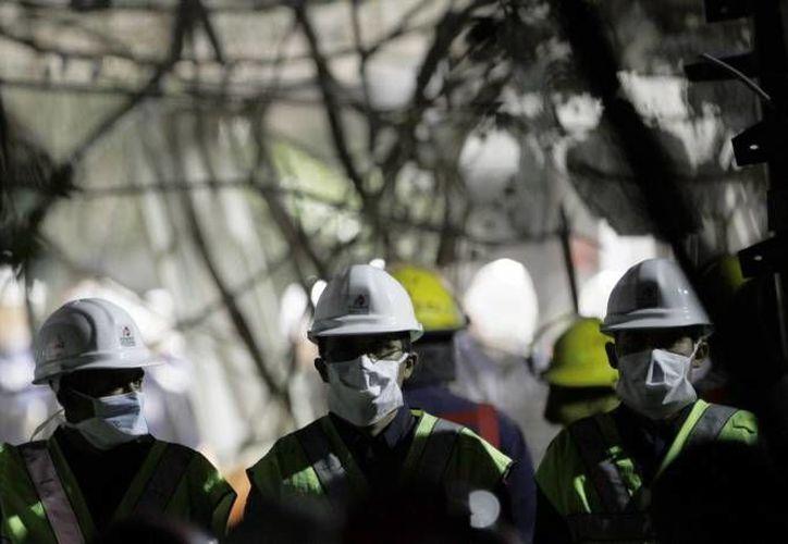 Trabajadores desalojan el recinto. (Archivo/SIPSE)