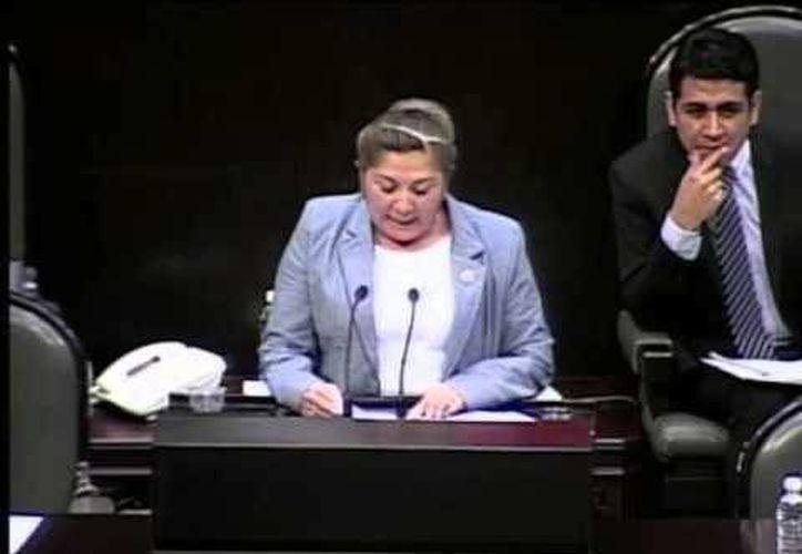 La legisladora federal afirma que actuó por desconocimiento al repartir despensas a días de una elección interna de su partido. (Milenio Novedades)