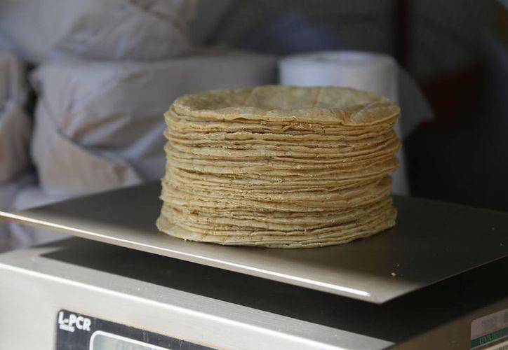 Las tortillas de maíz blanco seguirán a 16 pesos el kilo y las de maíz amarillo en 13 pesos. (Israel leal/SIPSE)
