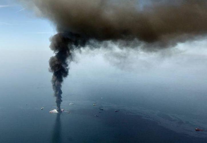 Cetur se mantiene alerta ante una posible exploración en la búsqueda de hidrocarburos en la zona de Yucatán. (Milenio Novedades)