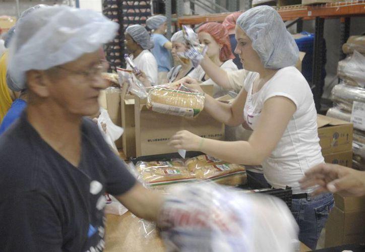 Bimbo Bakeries retiró del mercado 48 mil paquetes de pan vendidos que podrían contener fragmentos de vidrio de una planta de Estados Unidos. (Archivo Associated Press)