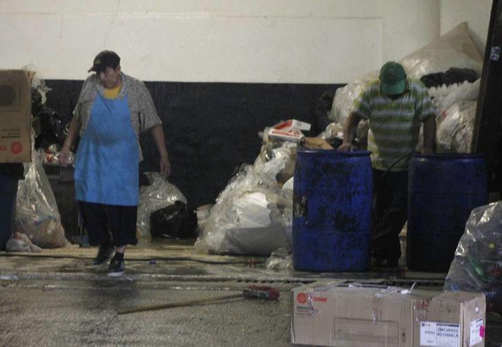 En Las Américas hay siete personas que se dedican a la separación de la basura. (Sergio Orozco/SIPSE)