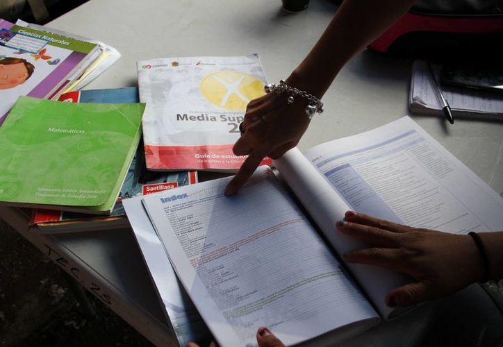 Comparan el plan de estudios con el contenido de los libros de texto. (Tomás Álvarez/SIPSE)