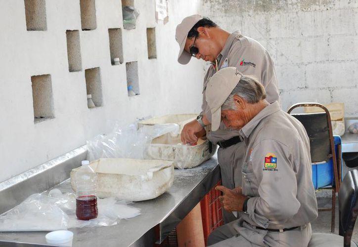 Trabajadores del área de vectores dijeron que falta de abastecimiento de insumos para combatir el mosco. (Tomás Álvarez/SIPSE)