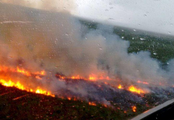 La dependencia indicó que el 70% del origen de un incendio forestal es por quema no autorizada. (Redacción/SIPSE)