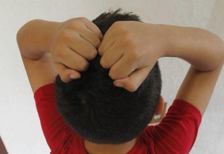 Señalan que el menor que muestra violencia también la ejerce. (Jesús Tijerina/SIPSE)
