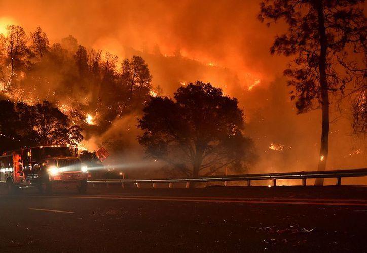 Un incendio forestal, causado por el choque de una motocicleta contra un árbol en el sur de California, ya consumió unas 700 hectáreas. (La Nación).