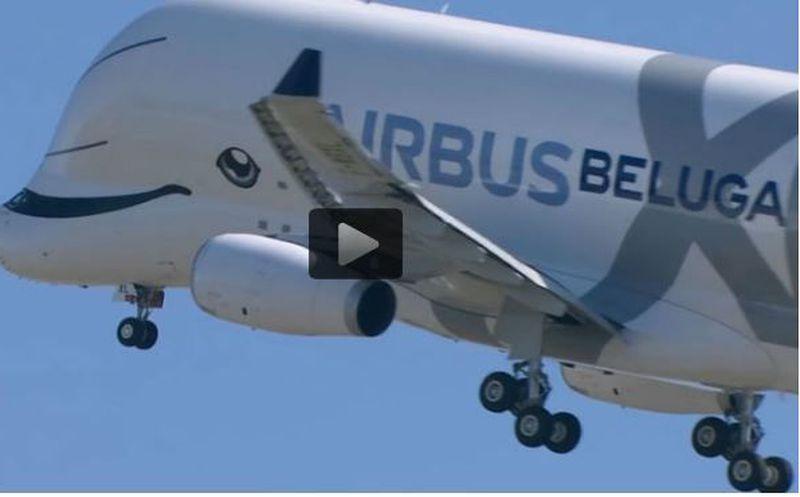 Este es el Airbus Beluga XL, el gigante de los aviones