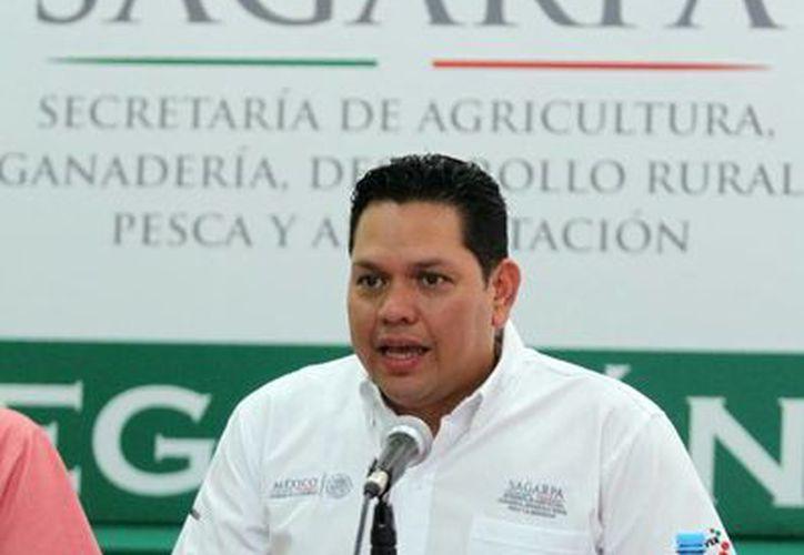 Pablo Castro Alcocer, delegado de la Sagarpa en la entidad, explicó que la liberación oportuna de los recursos antes de la temporada de siembra, está enfocada a fortalecer la producción del estado. (Milenio Novedades)