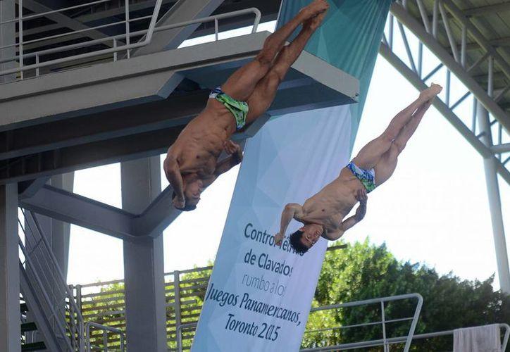 Rommel Pacheco y Jahir Ocampo se ubicaron en primer lugar al ganar en el control técnico de clavados de la rama varonil, rumbo a los Juegos Panamericanos de Toronto 2015. (Cuauhtemoc Moreno/SIPSE)