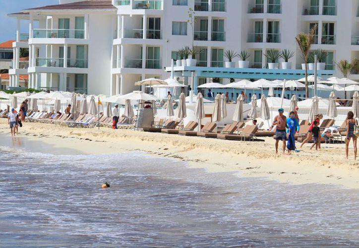 Playa Caribe, Playacar y el tramo costero de la calle 2 al Recodo volvieron a despejarse del alga marina. (Octavio Martínez/SIPSE)