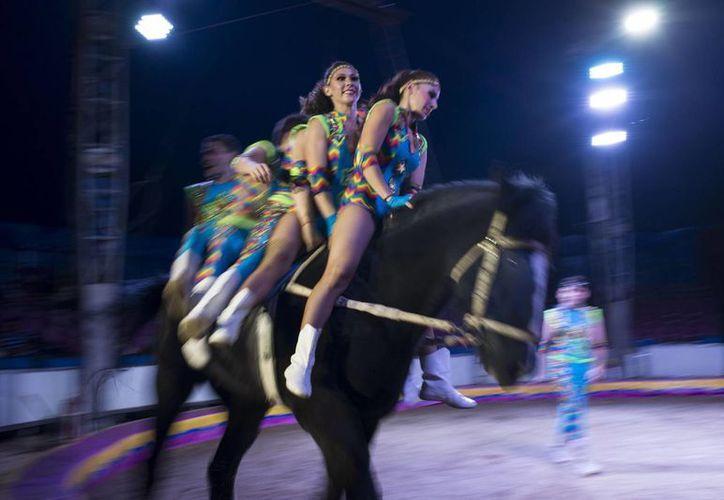 Artistas de un circo montan un caballo durante una de sus rutinas. (Agencias)