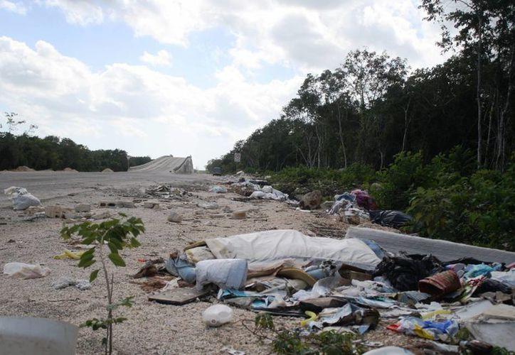 Tirar basura en lugares no adecuados de Playa del Carmen, se castiga con una multa e incluso con la cárcel.  (Octavio Martínez/SIPSE)