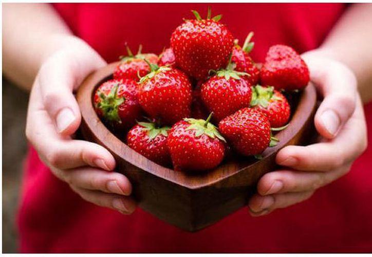 Experimentos realizados relevaron que el consumo de fresas podría servir para luchar contra el cáncer de mama. (Foto: Internet)