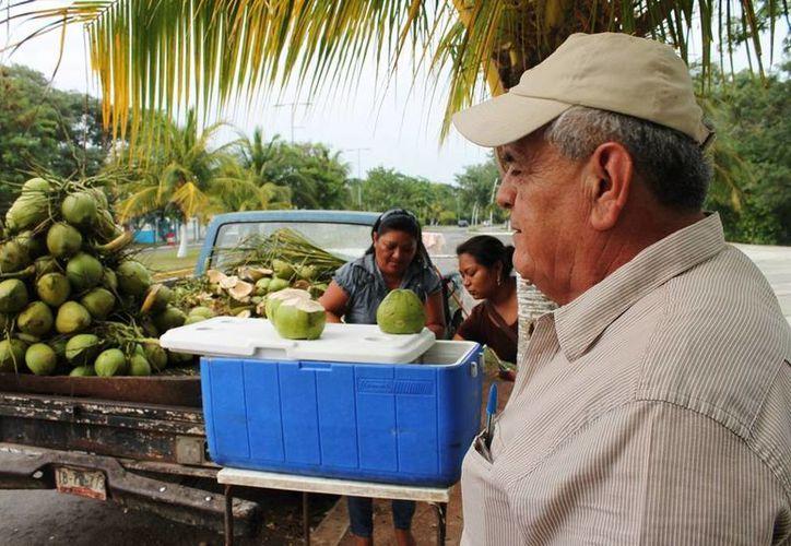 El año pasado los productores de esta fruta lograron integrar 450 solicitudes. (Edgardo Rodríguez/SIPSE)