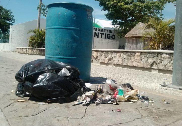 En el centro de la ciudad es común ver bolsas de basura rotas y fuera de los contenedores. (Rossy López/SIPSE)