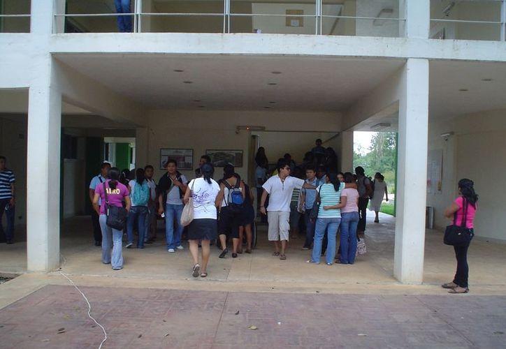 La falta de oportunidades obliga a los egresados de la Universidad Intercultural Maya de Quintana Roo a trabajar de taxistas o en áreas ajenas a la que estudiaron. (Carlos Yabur/SIPSE)