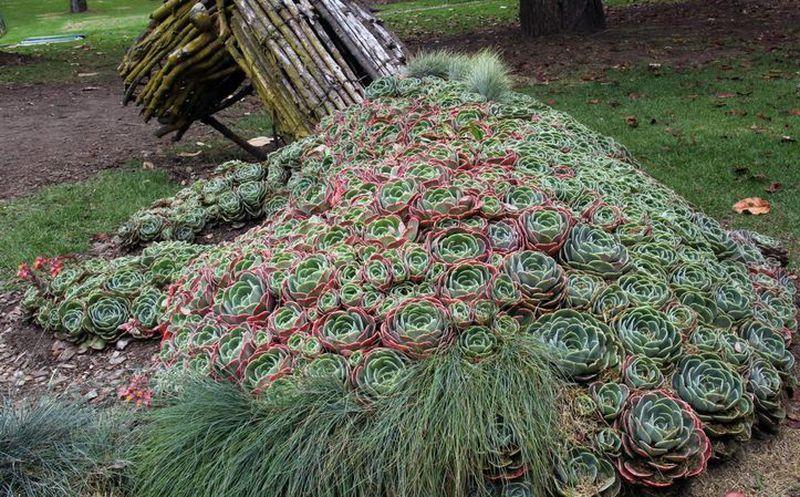 Jardín Botánico: un pulmón en el corazón de Bogotá | Noticias de ...