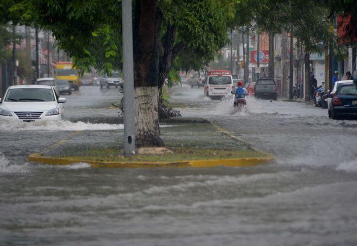 La lluvia que se hizo más intensa al desde las 9 de la mañana y hasta las 10:30. (Gustavo Villegas/ SIPSE)