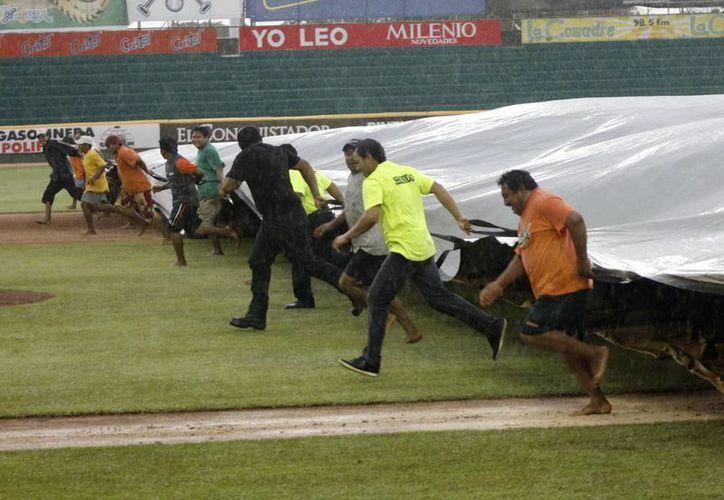 Personal del equipo melenudo protege el campo contra la lluvia. (SIPSE)