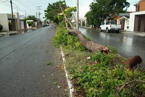 Tormenta de mitad de semana 'inunda' Mérida