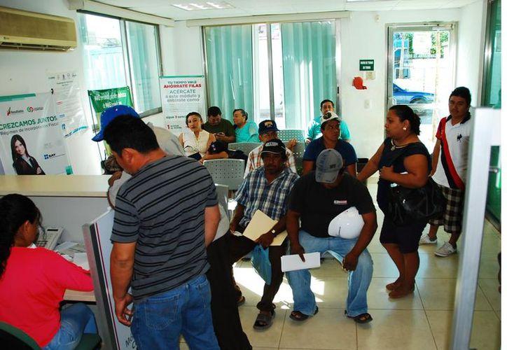 90 por ciento del padrón de automovilistas de Morelos cumplió en tiempo y forma con sus pagos. (Foto: Tony Blanco / SIPSE)