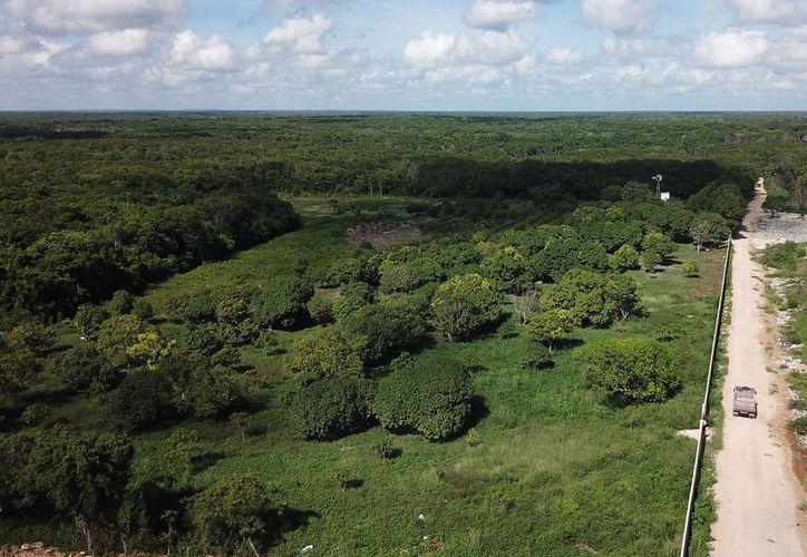 El gobierno federal, a través de la Secretaría de Comunicaciones y Transportes, expropió al ejido 120 hectáreas para obra carretera y desde 2008 esperan el pago de la indemnización. (Carlos Castillo/SIPSE)