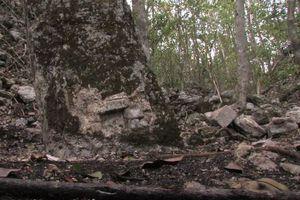 Hallan ciudad maya clásica 'escondida'