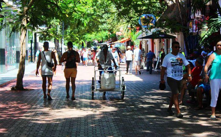 A esto se le añade la circulación de bicicletas al interior de la Quinta Avenida, lo cual no está permitido por la misma Dirección de Tránsito. (Octavio Martínez/SIPSE)