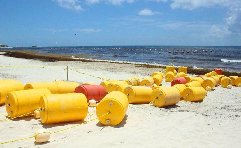 Dos centenares de boyas desaparecieron de las playas del centro de Playa del Carmen. (Daniel Pacheco/SIPSE)