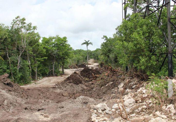 Habitantes denuncian nuevos daños ecológicos en el municipio. (Rossy López/SIPSE)