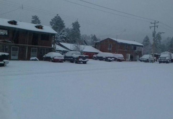 Las zonas más afectadas en Chihuahua son la región noroeste y la zona serrana, con una acumulación de nieve de 30 centímetros. (Notimex)