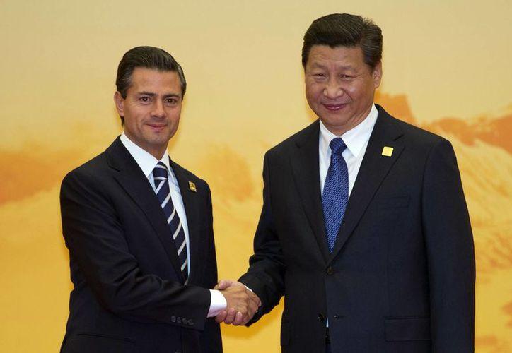 Enrique Peña Nieto Presidente de México estrecha la mano del presidente de China, Xi Jinping, durante una ceremonia de bienvenida para la cumbre de la Cooperación Económica Asia-Pacífico (APEC) en el Centro de Convenciones Internacional de Yanqi Lake, Beijing, China. (Agencias)