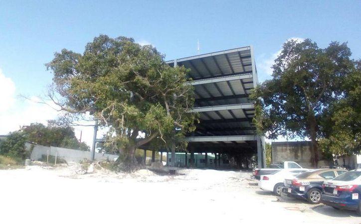 Fue detenida la construcción debido a las irregularidades. (Eric Galindo/SIPSE)