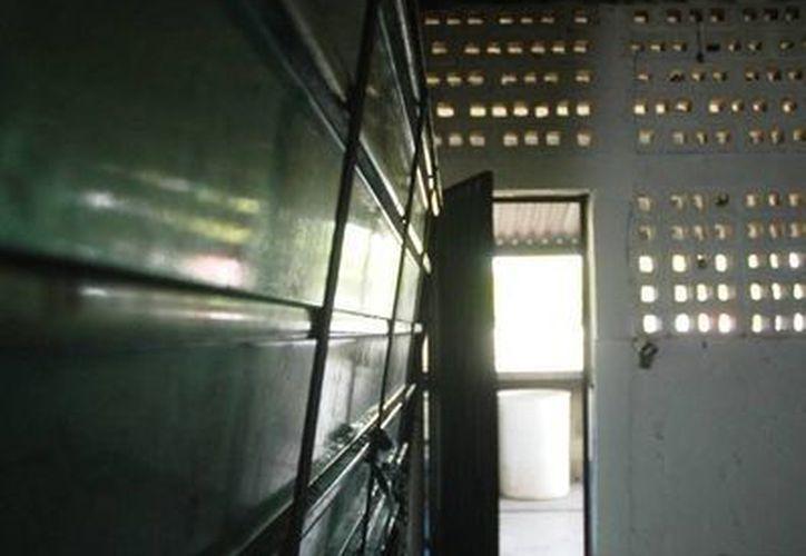 Los albergues lucen totalmente despoblados. (Edgardo Rodríguez/SIPSE)
