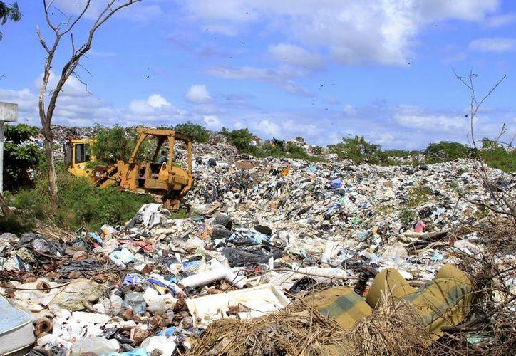 Los pepenadores del basurero dieron a conocer el derrame de lixiviados. (Carlos Horta/ SIPSE)