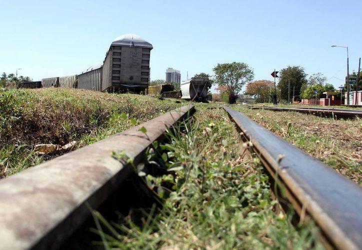 Parte de la inversión federal servirá para empezar el proyecto del Tren Transpeninsular. (Milenio Novedades)