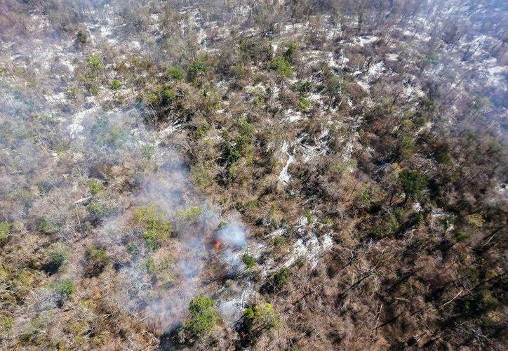 Reportan que el incendio en Nohalal está controlado. (Milenio Novedades)