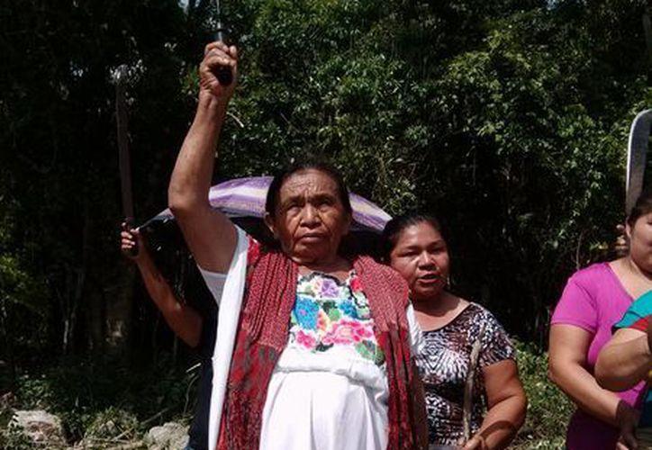 Una veintena de campesinas evitaron que se fraccione un predio agrícola destinado a ellas.  (Rossy López/SIPSE)