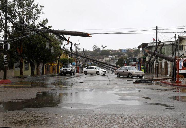 Un total de 38 postes de energía eléctrica cayeron a lo largo de un kilómetro de distancia, lo que afectó a vecinos de las colonias Jardín y Francisco Villa, sin que se registraran lesiones a personas, reportaron autoridades municipales de Tijuana, BC. (Notimex)