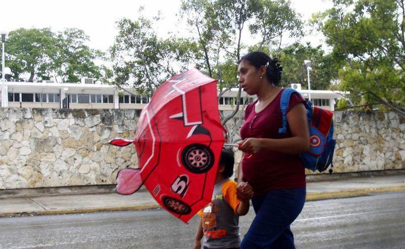Las lluvias serán más fuertes a partir del sábado. (Christian Ayala/SIPSE)