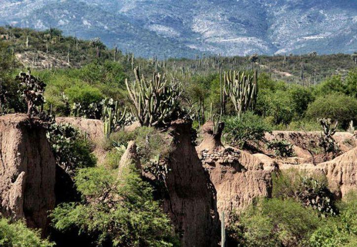 El valle se encuentra entre Puebla y Oaxaca. (Internet)