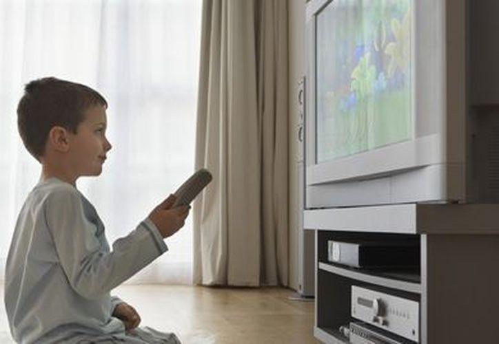 Aseguran que los programas violetos en televisión solo les presenta un futuro violento a los niños.  (elconfidencial.com)