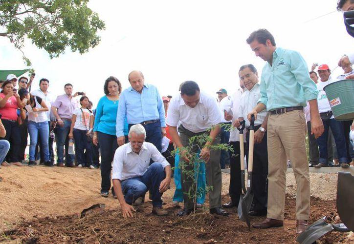 """Siembra en el parque lineal metropolitano """"Paseo Verde"""".(José Acosta/SIPSE)"""