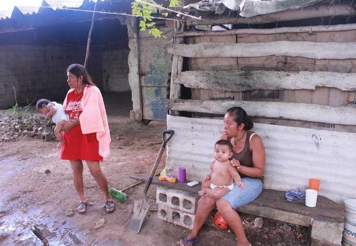 Actualmente viven en unas galeras donde antiguamente se albergaban los cortadores de caña. (Edgardo Rodríguez/SIPSE)