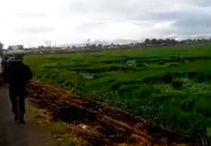 Captura de pantalla del video de un aficionado en el que pueden apreciarse algunas de las extrañas formas 'dibujadas' sobre un campo de cultivo, en Texcoco. (Milenio Digital)